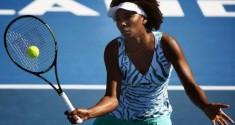 Williams Venus Auckland 1