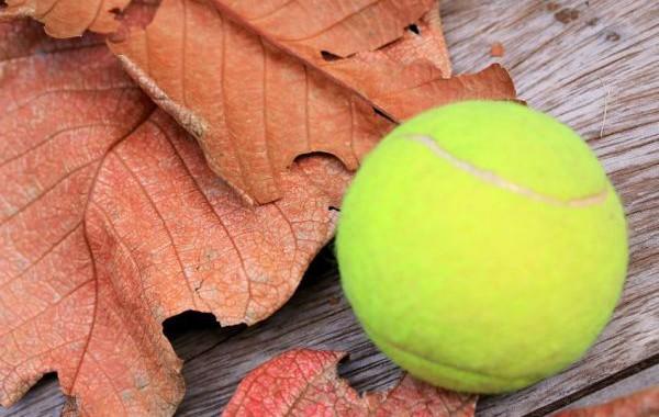 46861523 - tennis ball