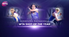 Isia shot of the year